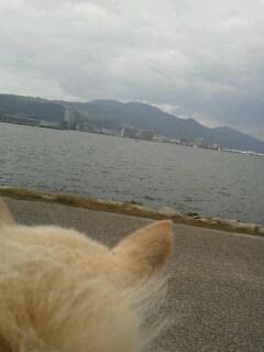 琵琶湖到着